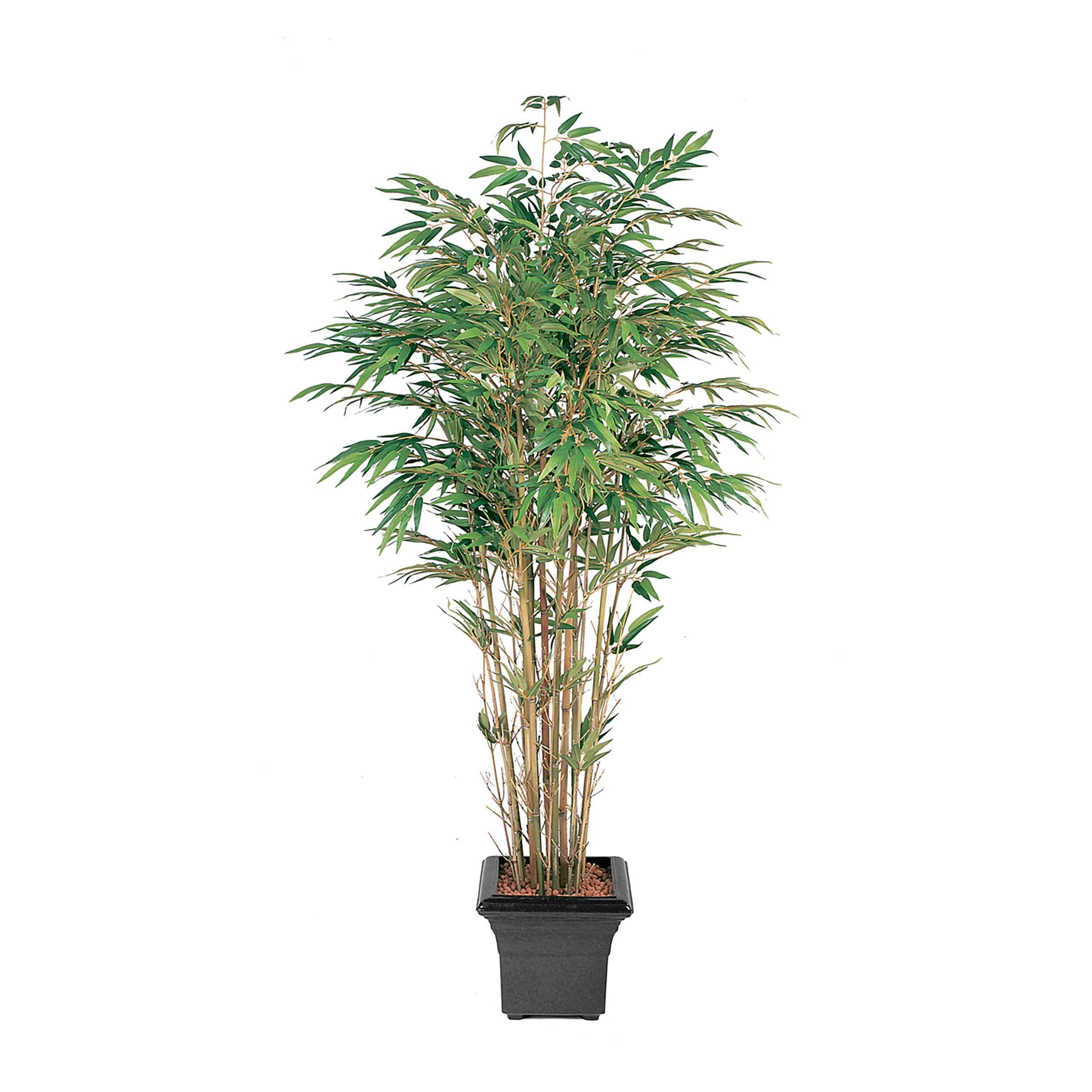 Купить Бамбук натуральный 180 см, COSMO RED, Зеленый, Пластик