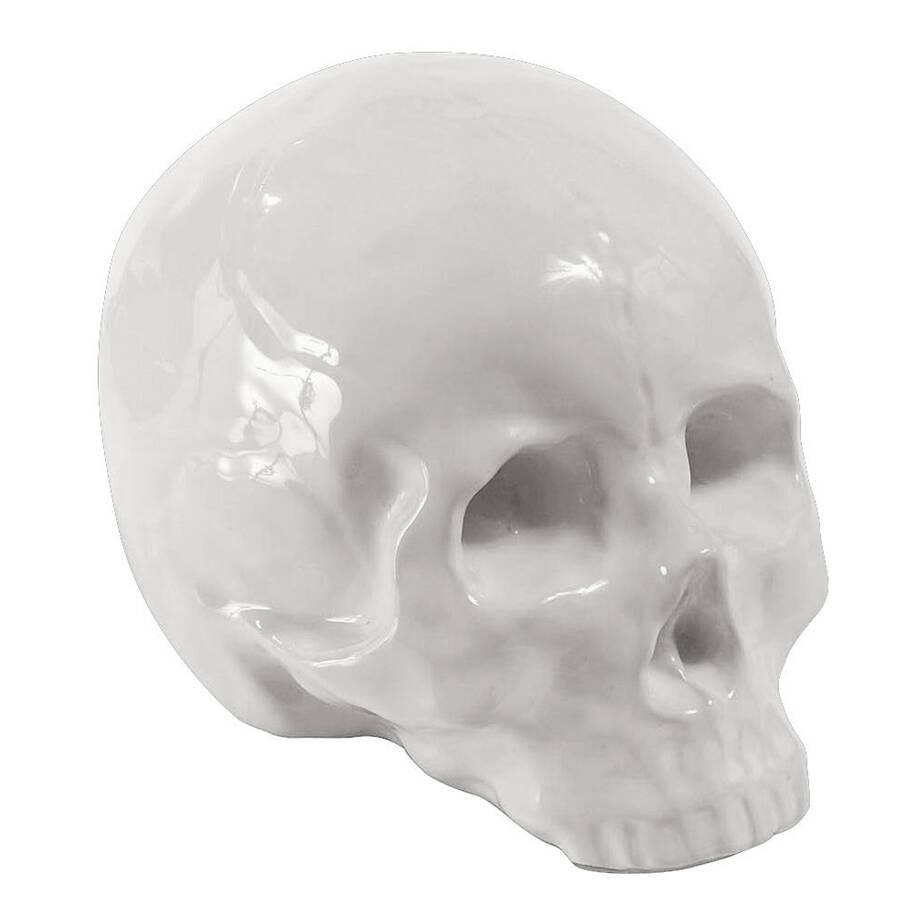 Фарфоровый череп MemorabiliaНастольные<br>Дизайнерская фарфоровая статуэтка Memorabilia (Меморабилия) в форме черепа от Seletti (Селетти).<br><br><br> Дизайнерский фарфоровый череп Memorabilia изготовлен из высококачественного фарфора. Доступны две конфигурации данного изделия — в золотом и белом цвете. Череп из коллекции Memorabilia был создан талантливыми дизайнерами компании Seletti. Данный бренд вот уже несколько лет славится экстраординарным и смелым взглядом на дизайн предметов интерьера.<br><br><br><br><br> Оригинальный череп из фарфора с...<br><br>stock: 0<br>Высота: 15<br>Ширина: 14<br>Материал: Фарфор<br>Цвет: Белый<br>Длина: 25