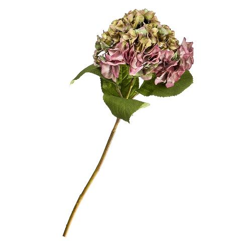 Гортензия (95230)Разное<br>SILK-KA - это известная Голландская компания, которая занимается производством искусственных цветов, фруктов и декоративных растений из шелка. Компания была создана благодаря безудержной страсти Patrick Oude Groeniger (директор и создатель SILK-KA) к цветам и фруктам. <br><br>Особое внимание создатель обратил на подлинное качество и безупречность искусственных цветов и фруктов. Всё создавалось с такой целью, чтобы трудно было отличить настоящее от искусственного. <br><br>Мастера компании активно работают...<br><br>stock: 6<br>Материал: Обработанная ткань, пластик<br>Цвет: purple<br>Длина: 70