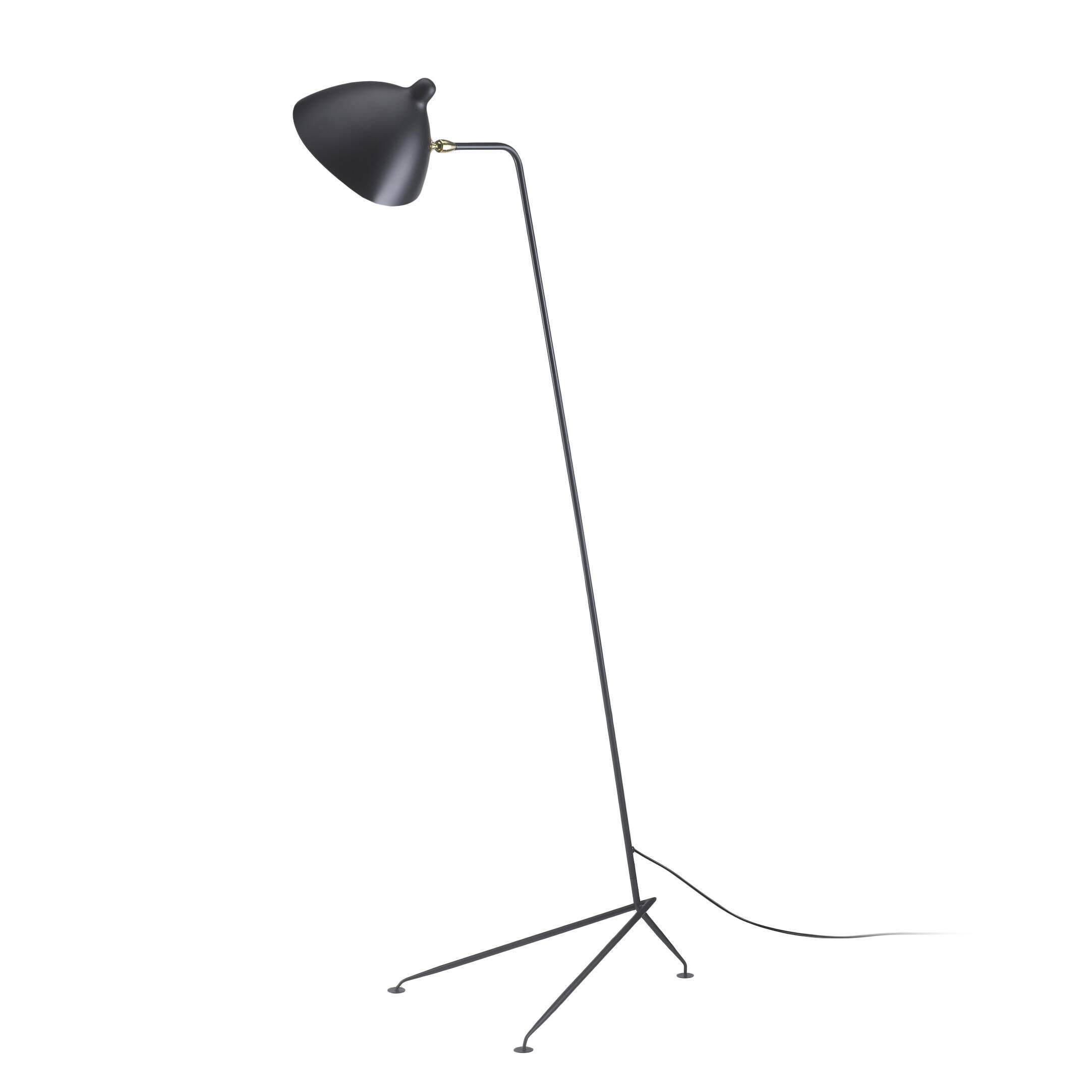 Напольный светильник Lampadaire 1Напольные<br>Оригинальный напольный светильник Lampadaire 1 из крашеного металла имеет утонченный дизайн, подчеркнутый необычной для ламп конструкцией. Светильник можно разместить в любом помещении любого дизайна.<br><br><br> Французский дизайнер Серж Муй прославился своей серией светильников Noir. Напольный светильник Lampadaire 1, как и другие модели серии, был разработан на основе прототипа, который назывался Tetine. Они отличаются формой абажура, идеально отражающей свет. Интересная конструкция основан...<br><br>stock: 0<br>Высота: 160<br>Ширина: 46<br>Длина: 54,5<br>Количество ламп: 1<br>Материал абажура: Алюминий<br>Материал арматуры: Сталь<br>Мощность лампы: 75<br>Ламп в комплекте: Нет<br>Тип лампы/цоколь: E14<br>Цвет абажура: Черный<br>Цвет арматуры: Черный<br>Цвет провода: Черный