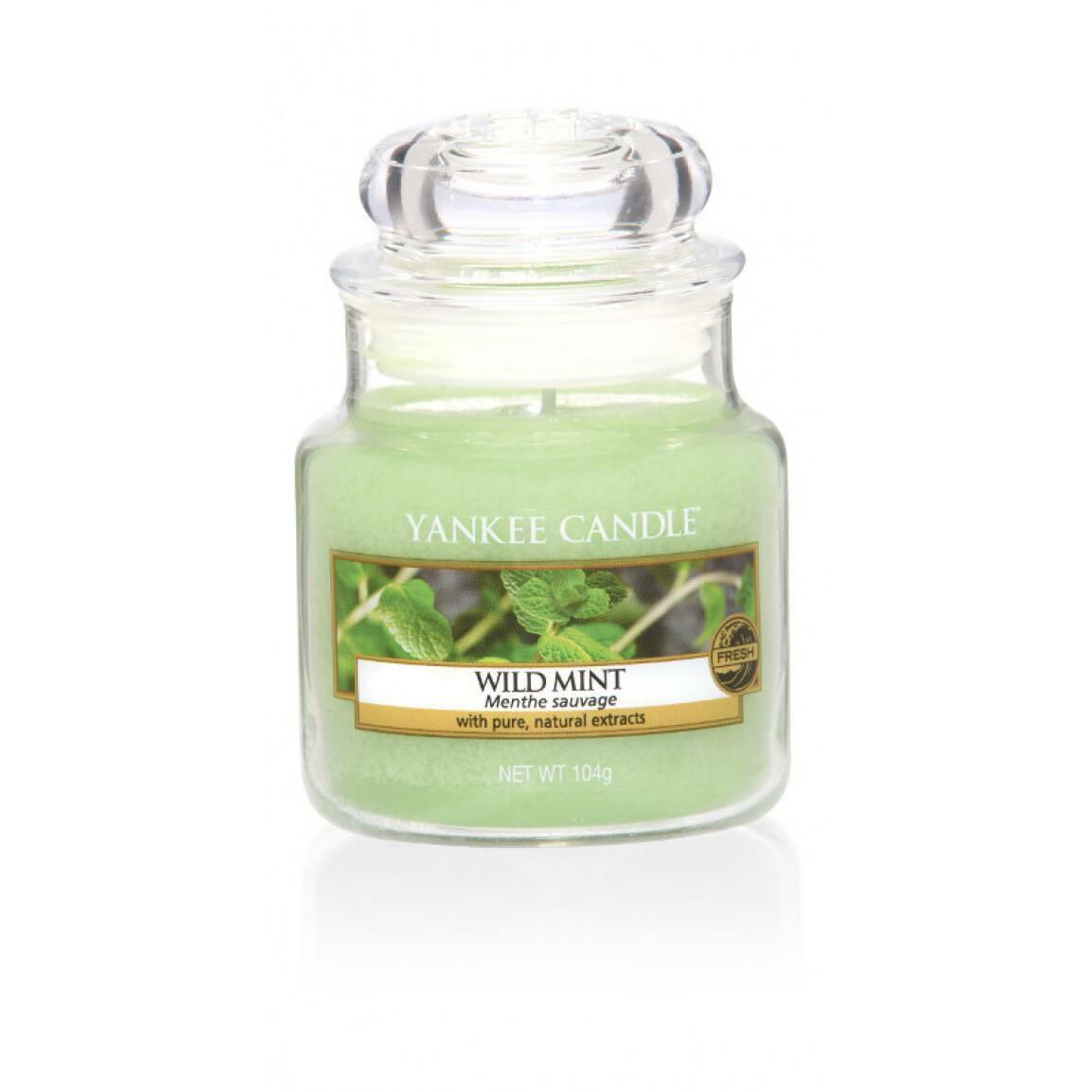 Свеча маленькая  в стеклянной банке Wild MintПодсвечники и свечи<br>Свеча маленькая в стеклянной банке Wild Mint — это листья дикой мяты, свежий, прохладный, бодрящий аромат. Верхняя нота — листья дикой мяты. Средняя нота — свежая мята. Базовая нота — мускус, сандаловое дерево.<br> <br> Сделано в США.<br> Время горения 25–40 часов.<br> Вес нетто 104 г<br><br>stock: 0<br>Высота: 8.6<br>Цвет: Зелёный<br>Диаметр: 5.8