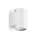 Светильник Roll Max Wall, WhiteУличные<br>Уличный светильник Roll Max Wall, White — большая модель настенного светильника с высоким уровнем гидроизоляции. <br>Может быть использован как в помещениях с повышенной влажностью (ванная <br>комната, бассейн), так и вне помещений. Используется для подсветки <br>вертикальных поверхностей стен, для подчеркивания фактуры фасада. <br>Заливает светом стену по всей высоте и полноценно освещает поверхность <br>пола. Отличается высокой яркостью и отличным качеством света.<br><br>stock: 0<br>Высота: 15<br>Диаметр: 8,2<br>Длина: 11<br>Длина провода: 100<br>Количество ламп: 6<br>Материал абажура: Алюминий<br>Материал арматуры: Алюминий<br>Мощность лампы: 32<br>Ламп в комплекте: Да<br>Напряжение: 220<br>Степень защиты: 67<br>Теплота света: 3000<br>Тип лампы/цоколь: LED<br>Цвет абажура: Белый<br>Цвет арматуры: Белый<br>Цвет провода: Черный