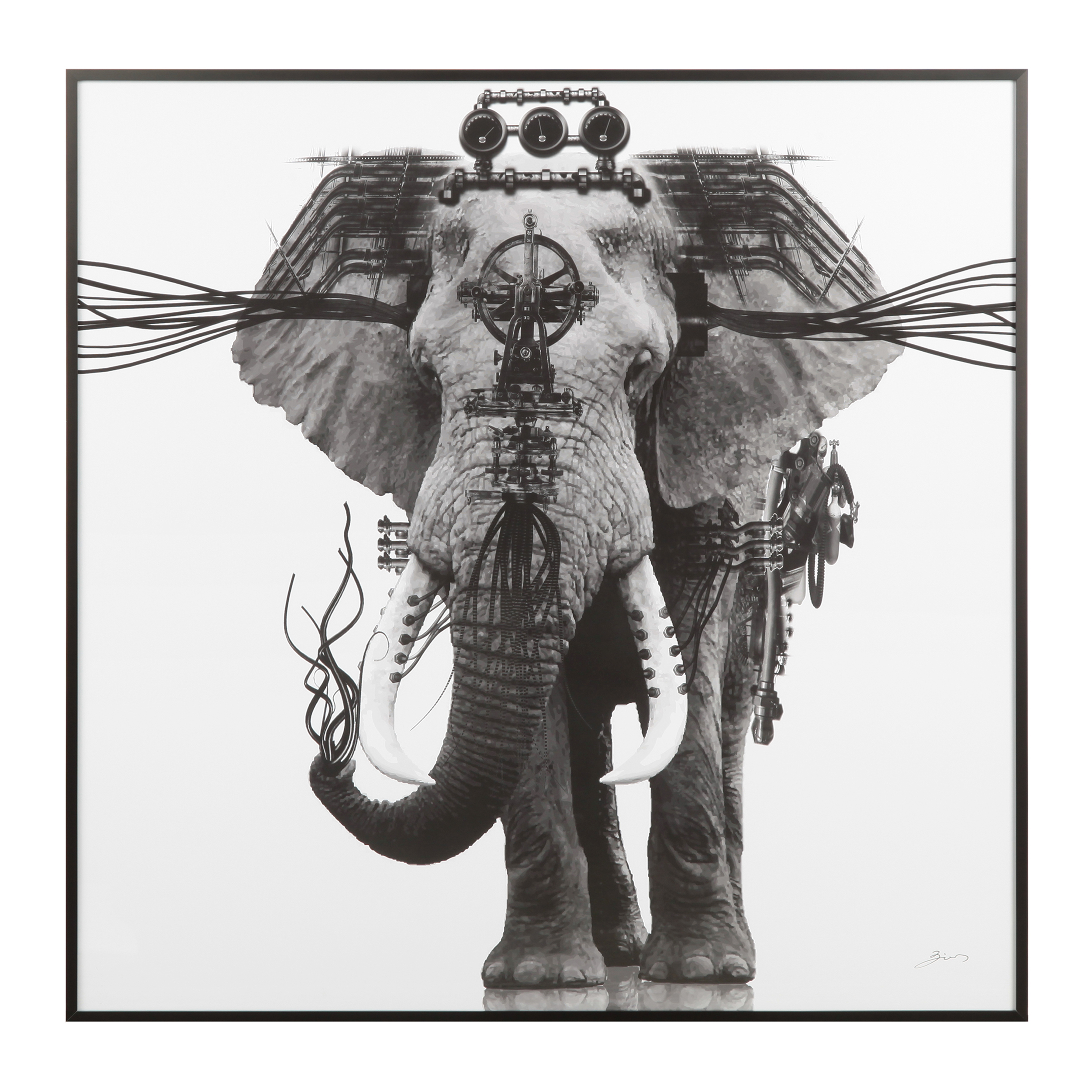 Постер Ornate Elephant