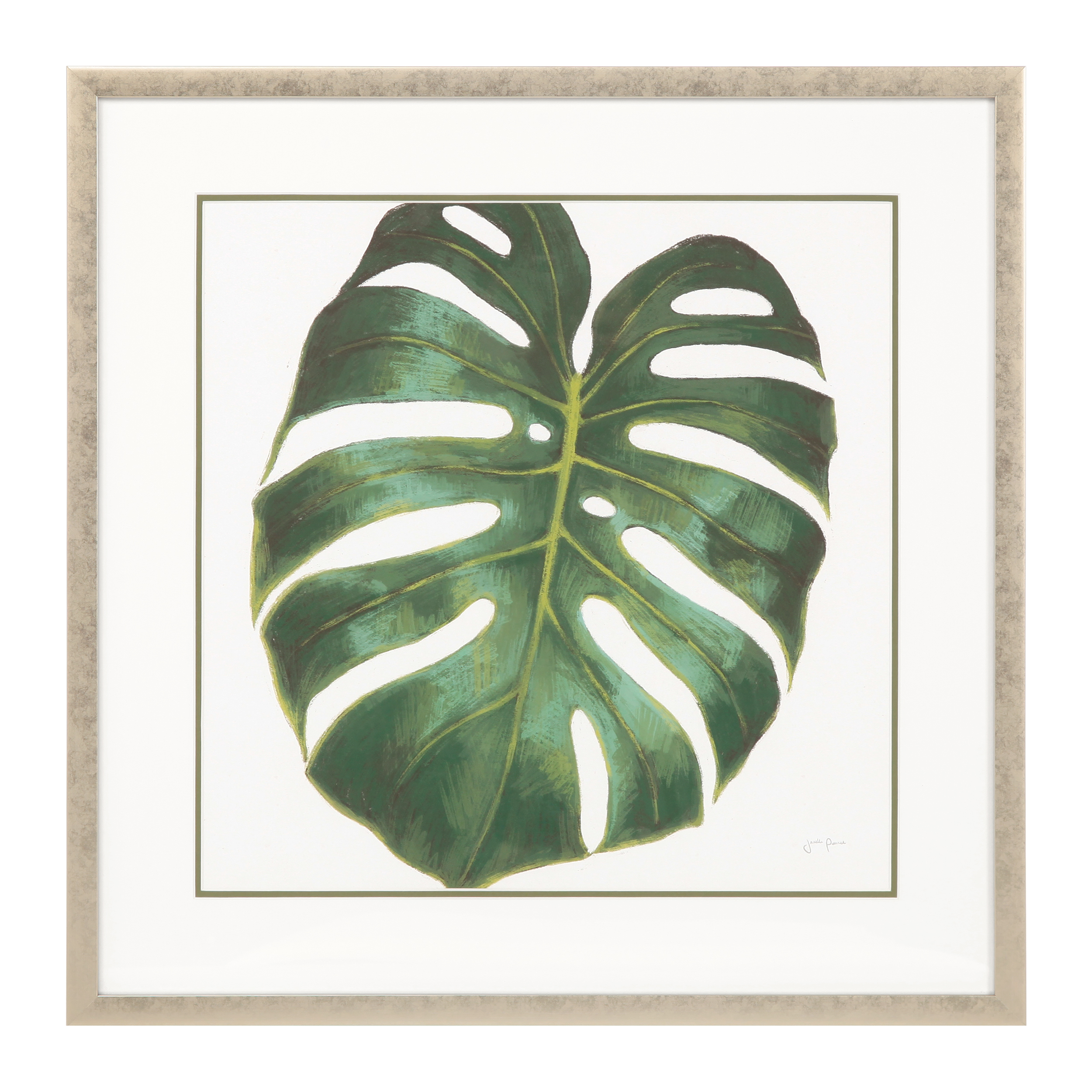 Постер Monstera mbs monstera 160 inox