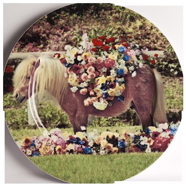 Тарелка PonyПосуда<br>Тарелка Pony из коллекции Toiletpaper от компании Seletti — это как раз то, что и следовало ожидать от этой дизайн-студии. Знаменитые на весь мир Seletti не раз прогремели своими коллекциями посуды и мебели провокационного содержания. Но за это их все и любят. <br> <br> Кухонная утварь Toiletpaper названа в честь одноименного журнала, основанного в 2010 году художником Маурицио Кателланом и фотографом Пьерпауло<br> Феррари. За время существования издания огромное количество изображений<br> из журнала...<br><br>stock: 5<br>Материал: Фарфор<br>Цвет: Разноцветный/Colorful<br>Диаметр: 27