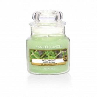 Свеча маленькая  в стеклянной банке Wild Mint