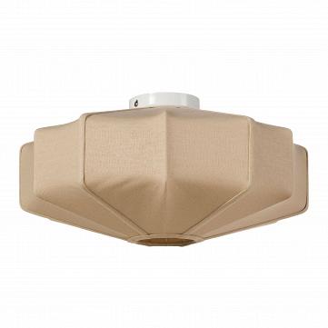 Потолочный светильник C6668S
