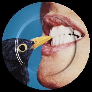 Тарелка Blackbird