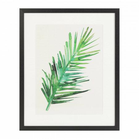 Купить Постер Palm 2 в интернет-магазине