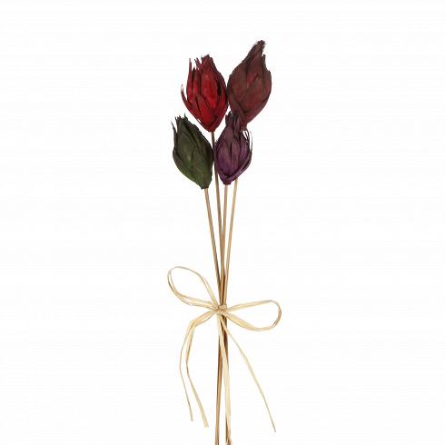 Декор Fiore 7Разное<br>Любой интерьер оживает только благодаря декору. Элементы украшения приносят в дом индивидуальность и уют, пронизывают дизайн атмосферностью.<br> <br> Коллекция Fioreот виртуозов в области дизайна компании Seletti — это полезный инструмент, с помощью которого вы непременносоздадите желаемый уют. С этим растительным декоромвы сможете оформить свой интерьер в скандинавском экостиле. В композицию из веточек можно добавить дополнительные элементы или составить ее в нескольких вазах. ...<br>
