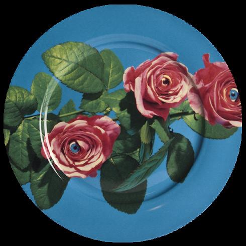 Тарелка RoseПосуда<br>Тарелка Rose из коллекции Toiletpaper от компании Seletti — это как раз то, что и следовало ожидать от этой дизайн-студии. Знаменитые на весь мир Seletti не раз прогремели своими коллекциями посуды и мебели провокационного содержания. Но за это их все и любят. <br> <br> Кухонная утварьToiletpaper названа в честь одноименного журнала, основанного в 2010 году художником Маурицио Кателланом и фотографом Пьерпауло<br> Феррари. За время существования издания огромное количество изображений<br> из жу...<br>