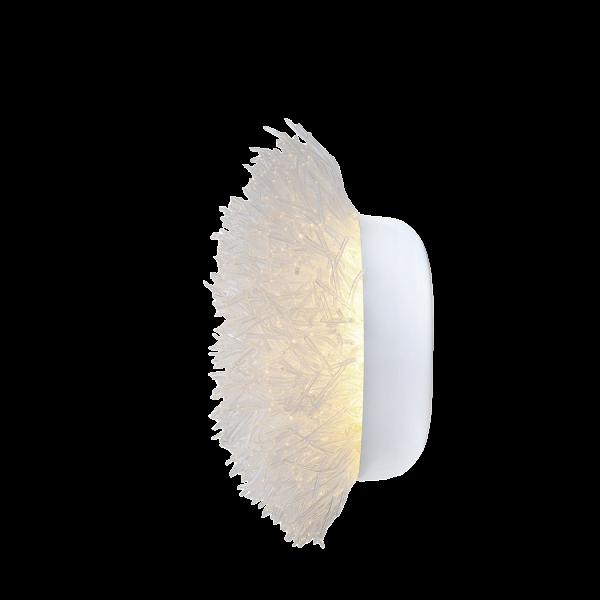 Настенный светильник AnemoneНастенные<br>Настенный светильник Anemone напоминает своим видом прекрасную морскую анемону и сформирован изВсотни полистирольных щупалец. Несколько светодиодных лампочек, создающих эффект светящихся подводных кораллов, встроены в каждую лампу.<br><br><br> Светильник для компании Hive придумала Оливия Д'Абовиль, молодая французско-филиппинская художница, которая вВ2009 году сВотличием получила высшее образование вВпрестижной парижской школе текстильного дизайна DuperrГ©. Инте...<br><br>stock: 0<br>Высота: 26.5<br>Диаметр: 46<br>Материал абажура: Полистирол<br>Мощность лампы: 6,72<br>Тип лампы/цоколь: LED<br>Дизайнер: Olivia dAboville