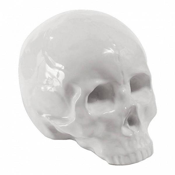 Фарфоровый череп MemorabiliaНастольные<br>Дизайнерская фарфоровая статуэтка Memorabilia (Меморабилия) в форме черепа от Seletti (Селетти).<br><br><br> Дизайнерский фарфоровый череп Memorabilia изготовлен изВвысококачественного фарфора. Доступны две конфигурации данного изделияВ— вВзолотом иВбелом цвете. Череп изВколлекции Memorabilia был создан талантливыми дизайнерами компании Seletti. Данный бренд вот уже несколько лет славится экстраординарным иВсмелым взглядом наВдизайн предметов интерьера.<br><br><br><br>...<br><br>stock: 0<br>Высота: 15<br>Ширина: 14<br>Материал: Фарфор<br>Цвет: Белый<br>Длина: 25