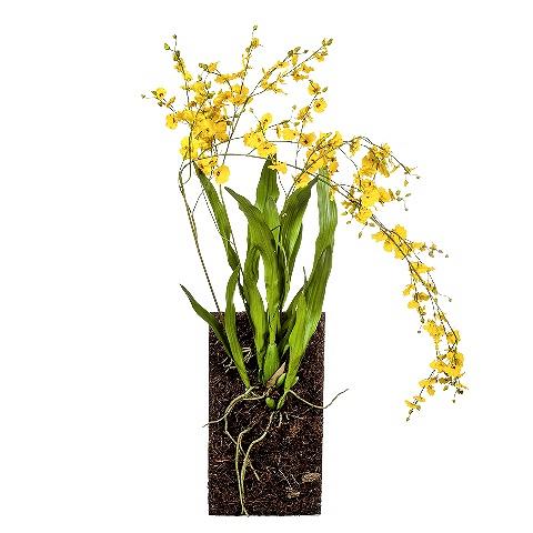 Орхидея (104759)Разное<br>SILK-KA - это известная Голландская компания, которая занимается производством искусственных цветов, фруктов и декоративных растений из шелка. Компания была создана благодаря безудержной страсти Patrick Oude Groeniger (директор и создатель SILK-KA) к цветам и фруктам. <br><br>Особое внимание создатель обратил на подлинное качество и безупречность искусственных цветов и фруктов. Всё создавалось с такой целью, чтобы трудно было отличить настоящее от искусственного. <br><br>Мастера компании активно работают...<br><br>stock: 3<br>Материал: Обработанная ткань, пластик<br>Цвет: Mixed<br>Длина: 140