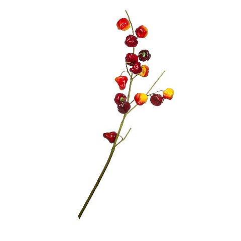 Ветка ягодная (104753)Разное<br>SILK-KA - это известная Голландская компания, которая занимается производством искусственных цветов, фруктов и декоративных растений из шелка. Компания была создана благодаря безудержной страсти Patrick Oude Groeniger (директор и создатель SILK-KA) к цветам и фруктам. <br><br>Особое внимание создатель обратил на подлинное качество и безупречность искусственных цветов и фруктов. Всё создавалось с такой целью, чтобы трудно было отличить настоящее от искусственного. <br><br>Мастера компании активно работают...<br><br>stock: 4<br>Материал: Обработанная ткань, пластик<br>Цвет: Mixed<br>Длина: 105