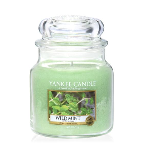 Свеча средняя в стеклянной банке Wild MintПодсвечники и свечи<br>Свеча средняя в стеклянной банке Wild Mint — это листья дикой мяты, свежий, прохладный, бодрящий аромат.<br><br> Сделано в США.<br> Время горения 65–90 часов.<br>Вес 411 г<br><br>stock: 1<br>Высота: 12.7<br>Цвет: Зелёный<br>Диаметр: 10.7
