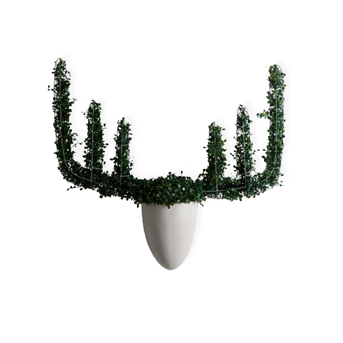 Настенная ваза с каркасом для плетения Menagerie MooseКашпо<br>Настенная ваза сВкаркасом для плетения Menagerie Moose — дизайнерская работа Моны Олкудии, выполненная специально для компании Hive. Настенная ваза добавит интересные животные акценты, которые станут игривым дополнением кВинтерьеру вашего дома, рабочего офиса или бара.<br><br><br><br><br> Переплетенные между собой металлические полосы сварены друг сВдругом таким образом, чтобы принять форму рогов лося, оленя или барана.<br><br>stock: 0<br>Высота: 67.5<br>Ширина: 19<br>Материал: Металл<br>Цвет: Серый<br>Длина: 62<br>Толщина шпона: Армированный полимер<br>Дизайнер: Mona Alcudia