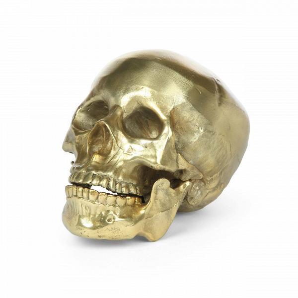 Статуэтка Human SkullНастольные<br>Представления об уютном интерьере очень индивидуальны – современные дизайнеры уже не удивляются даже самым необычным предпочтениям. Ну а череп в интерьере даже можно назвать классикой жанра – это частый атрибут дома в готическом стиле. В виде черепа может быть сделано все что угодно, от настольной лампы до шкатулки. Статуэтка Human Skull представляет собой декоративный элемент, которым можно украсить любую комнату.<br><br><br> Модель сделана из легкого и прочного алюминия, такие изделия очень ...<br><br>stock: 7<br>Высота: 15<br>Ширина: 20<br>Материал: Алюминий<br>Цвет: Золотой<br>Длина: 13