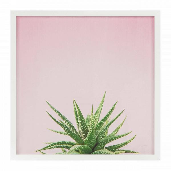Постер AloeКартины<br><br><br>stock: 6<br>Ширина: 74,4<br>Цвет: Разноцветный<br>Длина: 74,4