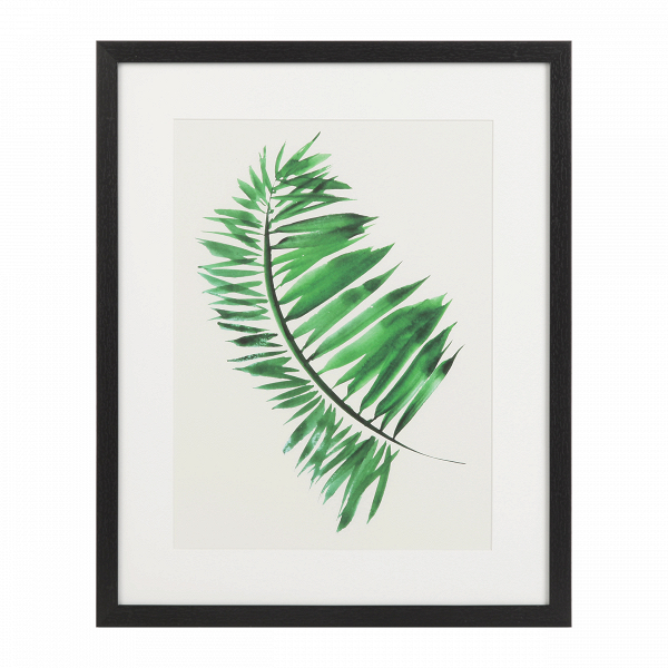 Постер Palm 1Картины<br><br><br>stock: 12<br>Ширина: 43<br>Цвет: Зеленый<br>Длина: 53