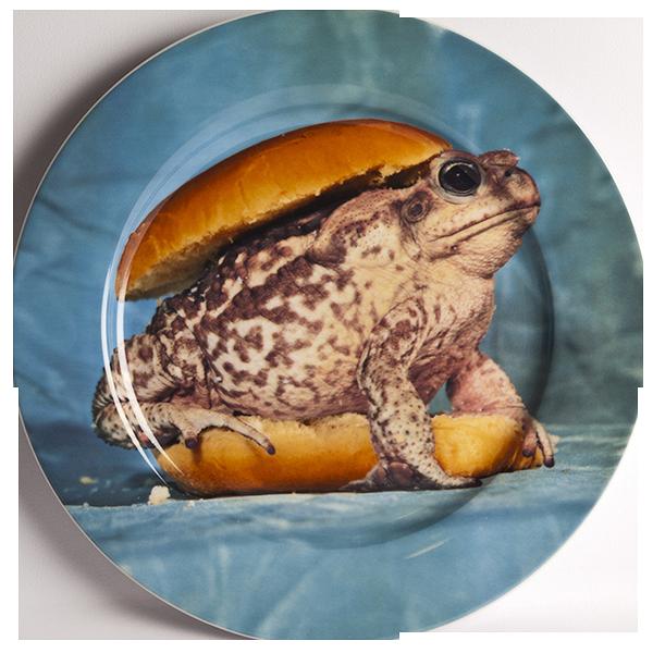 Тарелка ToadПосуда<br>Тарелка Toad из коллекции Toiletpaper от компании Seletti — это как раз то, что и следовало ожидать от этой дизайн-студии. Знаменитые на весь мир Seletti не раз прогремели своими коллекциями посуды и мебели провокационного содержания. Но за это их все и любят. <br> <br> Кухонная утварьВToiletpaper названа в честь одноименного журнала, основанного в 2010 году художником Маурицио Кателланом и фотографом Пьерпауло<br> Феррари. За время существования издания огромное количество изображений<br> из жу...<br><br>stock: 2<br>Материал: Фарфор<br>Цвет: Разноцветный/Colorful<br>Диаметр: 27