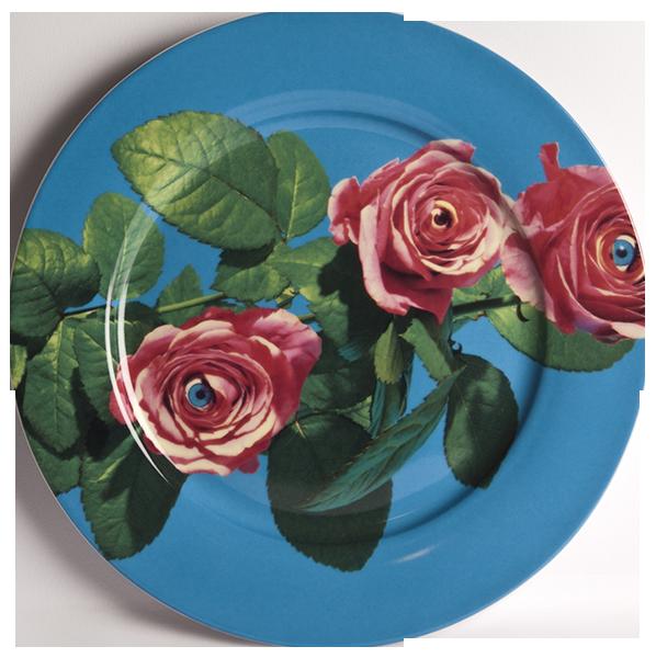 Тарелка RoseПосуда<br>Тарелка Rose из коллекции Toiletpaper от компании Seletti — это как раз то, что и следовало ожидать от этой дизайн-студии. Знаменитые на весь мир Seletti не раз прогремели своими коллекциями посуды и мебели провокационного содержания. Но за это их все и любят. <br> <br> Кухонная утварьВToiletpaper названа в честь одноименного журнала, основанного в 2010 году художником Маурицио Кателланом и фотографом Пьерпауло<br> Феррари. За время существования издания огромное количество изображений<br> из жу...<br><br>stock: 2<br>Материал: Фарфор<br>Цвет: Разноцветный/Colorful<br>Диаметр: 27