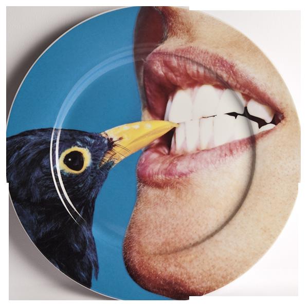 Тарелка BlackbirdПосуда<br>Тарелка Blackbird из коллекции Toiletpaper от компании Seletti — это как раз то, что и следовало ожидать от этой дизайн-студии. Знаменитые на весь мир Seletti не раз прогремели своими коллекциями посуды и мебели провокационного содержания. Но за это их все и любят. <br> <br> Кухонная утварьВToiletpaper названа в честь одноименного журнала, основанного в 2010 году художником Маурицио Кателланом и фотографом Пьерпауло<br> Феррари. За время существования издания огромное количество изображений<br> ...<br><br>stock: 0<br>Материал: Фарфор<br>Цвет: Разноцветный/Colorful<br>Диаметр: 27